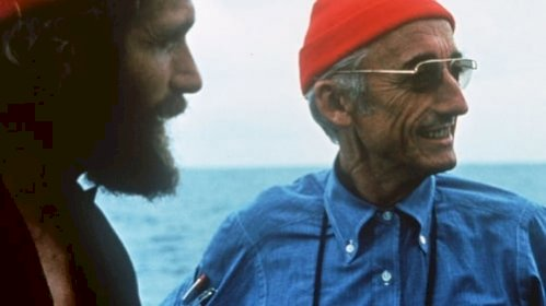 La collection Cousteau N°2-1 - Le chant des dauphins (1972) online subtitrat
