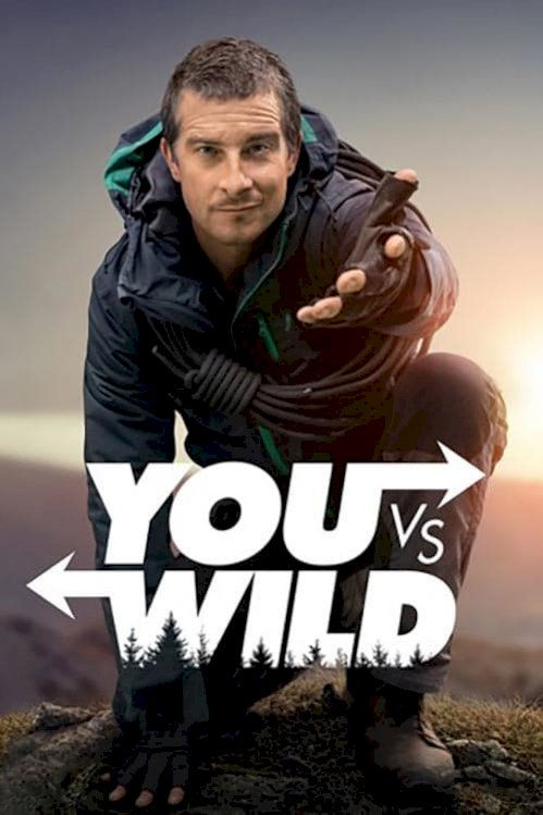 You vs. Wild (2019) online subtitrat
