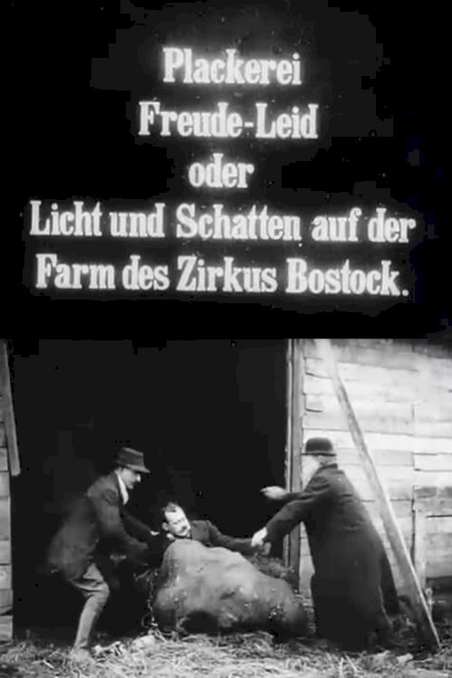 Lights and Shades on the Bostock Circus Farm (1911) online subtitrat